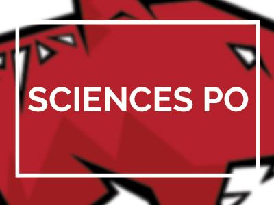 logo science politique bordeaux tigre